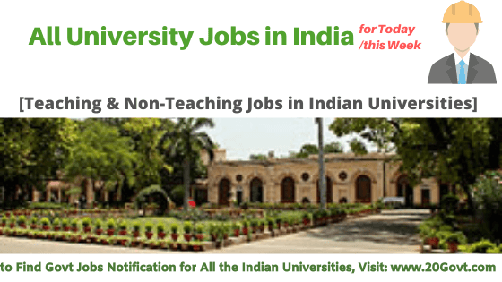 All University Jobs in India-560x315